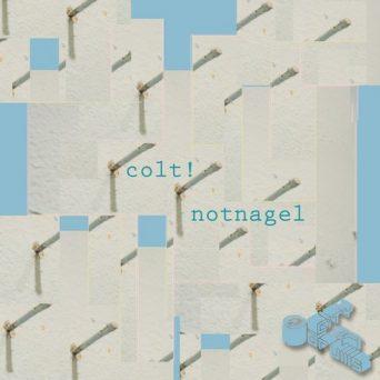 Notnagel | Colt!