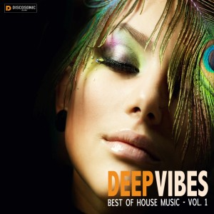 cover_VariousArtists_DeepVibes-BestofHouseMusic,Vol.1_Discosonic
